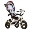 Трехколесный детский велосипед TRIX HG-T60, мультицвет